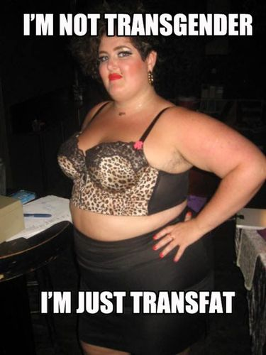 Transgender%20and%20Transfat%202